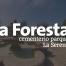 parque cementerio La Foresta La Serena