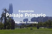 Exposición Paisaje Primario Soledad Ramsay